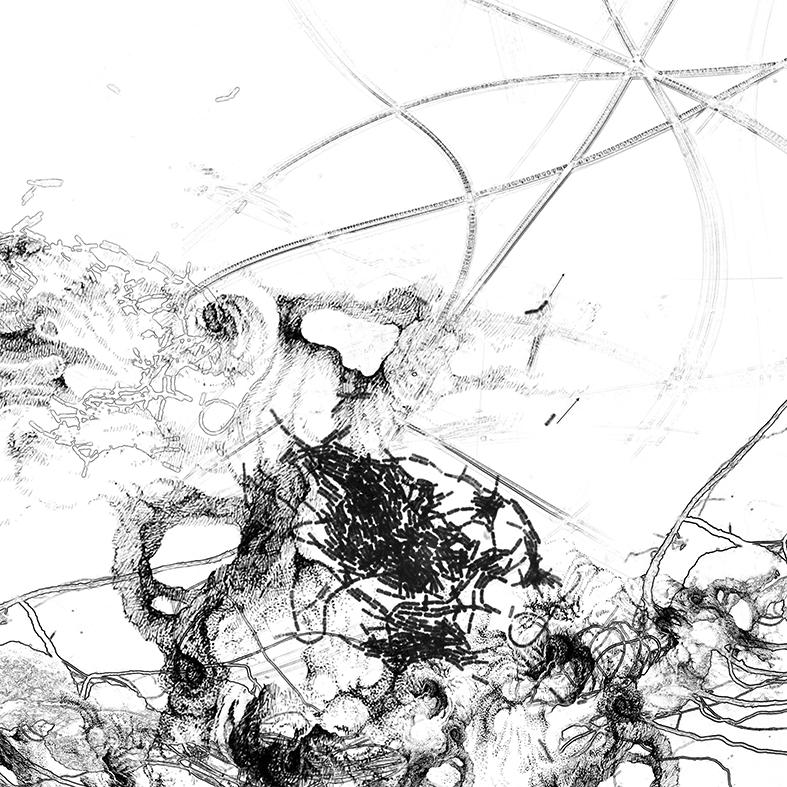 Bacillus (Bt) n°5, dessin sur plexiglass, 80 x 80 cm, 2017. Transfiguration et dévoilement de la bactérie Bacillus thuringiensis (Bt) utilisée classiquement en agriculture.