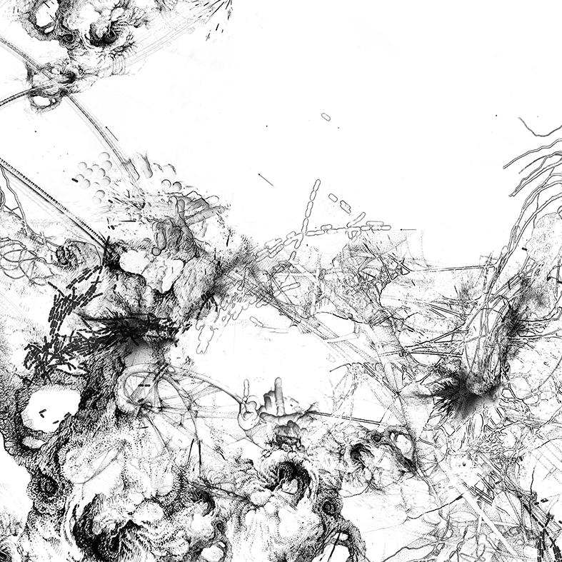 Bacillus (Bt) n°8, dessin sur plexiglass, 80 x 80 cm, 2017. Transfiguration et dévoilement de la bactérie Bacillus thuringiensis (Bt) utilisée classiquement en agriculture.