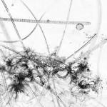 Germe 4 – série « H2O », dessin à l'encre sur images de microscopie obtenues par microscopie de fluorescence et contraste de phase ; transfiguration et dévoilement de l'intimité cellulaire d'une goute d'eau, impression sur verre, dimensions variables, 2016.